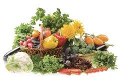 Grupo grande de objetos vegetales del alimento Fotografía de archivo libre de regalías