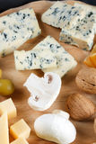 Grupo grande de queijos Imagem de Stock Royalty Free