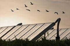 Grupo grande de sistemas solares de la calefacción por agua foto de archivo libre de regalías