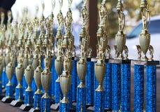 Grupo hermoso de trofeos imagen de archivo