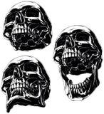 Grupo humano preto fresco altamente detalhado do crânio Fotos de Stock Royalty Free