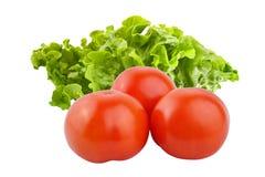 Grupo inteiro fresco dos tomates com a salada isolada no backgrou branco Fotografia de Stock