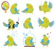 Grupo liso do vetor de papagaio em situações diferentes Pássaro bonito com as penas verde-clara e azuis Desenhos animados engraça ilustração royalty free