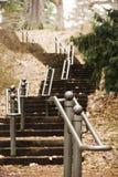 Grupo longo de escadas que atravessam a floresta em Highland Park Rochester, New York imagem de stock
