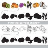 Grupo maduro do fruto Encontre a sombra correta ilustração royalty free