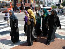 Grupo muçulmano das mulheres Imagem de Stock Royalty Free