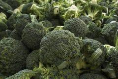 Grupo muito grande de brócolis verdes frescos Imagens de Stock