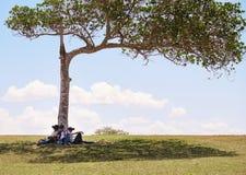 Grupo multiétnico de adolescentes que juegan realidad virtual en parque Imagen de archivo libre de regalías