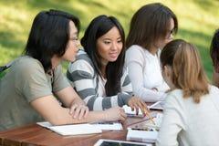 Grupo multiétnico de estudiantes jovenes felices Fotografía de archivo libre de regalías