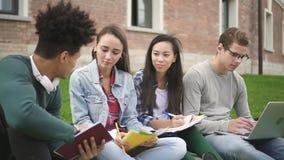 grupo Multi-étnico que habla junto, sentándose a lo largo de universidad del campus almacen de video