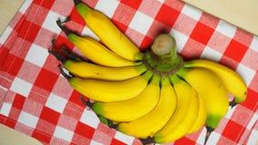 Grupo orgânico cru das bananas imagem de stock royalty free