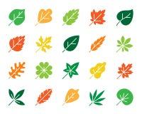 Grupo orgânico do vetor dos ícones da silhueta da cor da folha ilustração royalty free