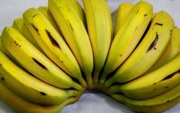 Grupo org?nico cru das bananas foto de stock