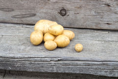 Grupo pequeno de batatas naturais frescas Fotos de Stock Royalty Free