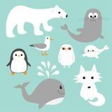 Grupo polar ártico do animal ilustração royalty free