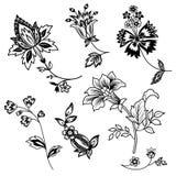 Grupo preto do esboço dos ramos da flor Imagens de Stock Royalty Free