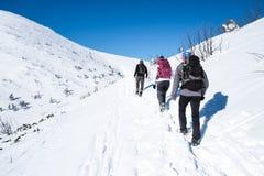Grupo que camina en las montañas nevosas Foto de archivo libre de regalías