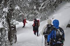 Grupo que caminha na tempestade de neve Fotos de Stock Royalty Free