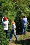 Grupo que etiqueta árvores de Natal Imagem de Stock