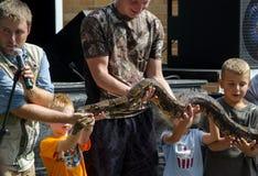 Grupo que sostiene una serpiente grande Foto de archivo libre de regalías