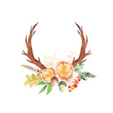 Grupo rústico da aquarela de flores e de folhas Fotos de Stock Royalty Free
