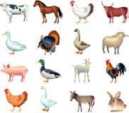 Grupo realístico da foto dos animais de exploração agrícola Imagem de Stock Royalty Free
