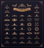 Grupo real luxuoso do logotipo Crista, emblema, monograma heráldico O vintage floresce elementos ilustração royalty free
