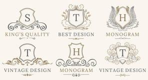 Grupo real retro do Logotype dos protetores do vintage Elementos luxuosos do projeto do logotipo do calligraphyc do vetor Sinais  ilustração do vetor