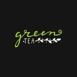Grupo retro caligráfico suculento brilhante do estilo de logotipo eco Logotype para o chá verde ilustração do vetor