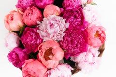 grupo rico isolado das peônias e das rosas de chá na opinião superior do fundo branco Fotografia de Stock Royalty Free