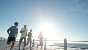 Grupo running do clube que corre ao longo de um passeio do beira-mar vídeos de arquivo