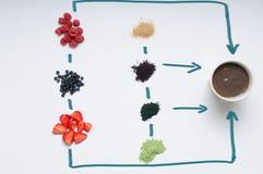 Grupo saudável de ingredientes orgânicos para o batido do acai Fotos de Stock Royalty Free
