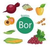 Grupo saudável do alimento A de alimentos orgânicos orgânicos com um índice alto da vitamina ilustração stock