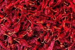Grupo secado vermelho dos pimentões Fundo e textura foto de stock royalty free