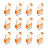 Grupo simples de ícones isométricos do formato de arquivo 3D Imagem de Stock