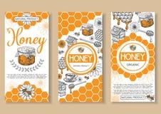 Grupo tirado do inseto do vetor do mel da abelha mão natural ilustração do vetor