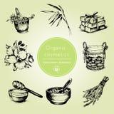 Grupo tirado mão de atributos orgânicos dos cosméticos Ilustração do vetor Estilo do vintage Imagem de Stock Royalty Free