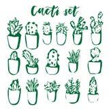 Grupo tirado mão do cacto e da planta carnuda Flores geométricas em uns potenciômetros Plantas bonitos coloridas do interior da c Imagem de Stock