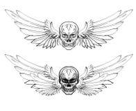 Grupo tirado mão do vetor do crânio Tatuagem do crânio da etiqueta tatuagem do estilo do esboço Fotografia de Stock Royalty Free