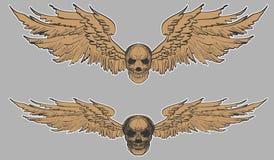 Grupo tirado mão do vetor do crânio Tatuagem do crânio da etiqueta tatuagem do estilo do esboço Fotografia de Stock