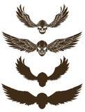 Grupo tirado mão do vetor do crânio Tatuagem do crânio da etiqueta tatuagem do estilo do esboço Imagens de Stock