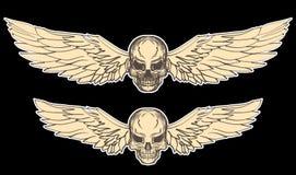 Grupo tirado mão do vetor do crânio Tatuagem do crânio da etiqueta tatuagem do estilo do esboço Imagens de Stock Royalty Free