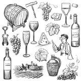 Grupo tirado mão do vinho do vetor do esboço ilustração royalty free