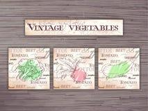 Grupo tirado mão do vintage de flashcards dos vegetais no contexto de madeira Brócolis, beterraba e abobrinha Foto de Stock
