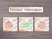 Grupo tirado mão do vintage de flashcards dos vegetais no contexto de madeira Tomate, pepino, pimenta Imagem de Stock Royalty Free