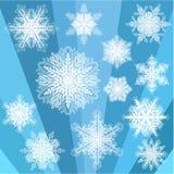 Grupo transparente azul do floco de neve Fotos de Stock Royalty Free