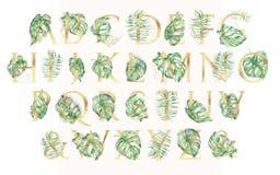 Grupo tropical dourado do alfabeto da aquarela de leeters com ilustrações verdes das folhas foto de stock royalty free