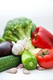 Grupo vegetal Imagem de Stock