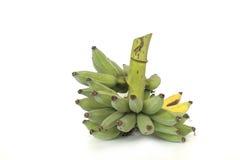 Grupo verde da banana Imagem de Stock Royalty Free