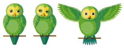 Grupo verde da coruja do vetor Imagem de Stock Royalty Free